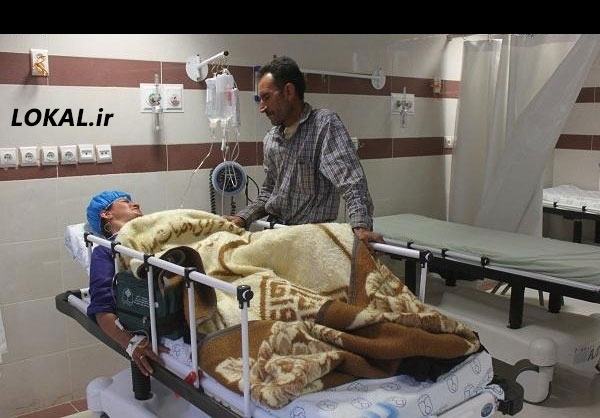 تصاویر حمله خرس به زن عشایری در سایت لوکال